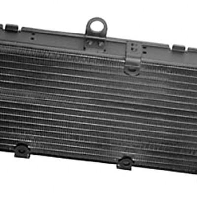 HLADNJAK  / RADIJATOR / KILER - HONDA CB 600 F HORNET (S / ABS) 1998-2006 <BR>* DIMENZIJE BEZ NOSAČA I PRIKLJUČAKA: <BR>* 410 x 176 x 30 mm